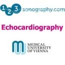 دوره کامل اکوکاردیوگرافی Masterclass Echocardiography