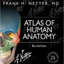 Netter's Atlas of Human Anatomy - 6th Edition تمام رنگی
